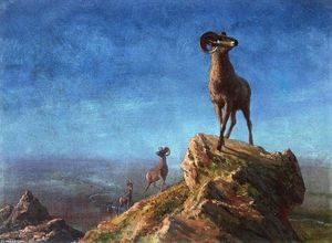 Albert Bierstadt - Rocky Mountain Big Horns