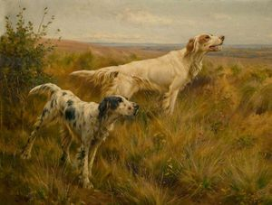 Thomas Blinks - Two Setters In A Landscape