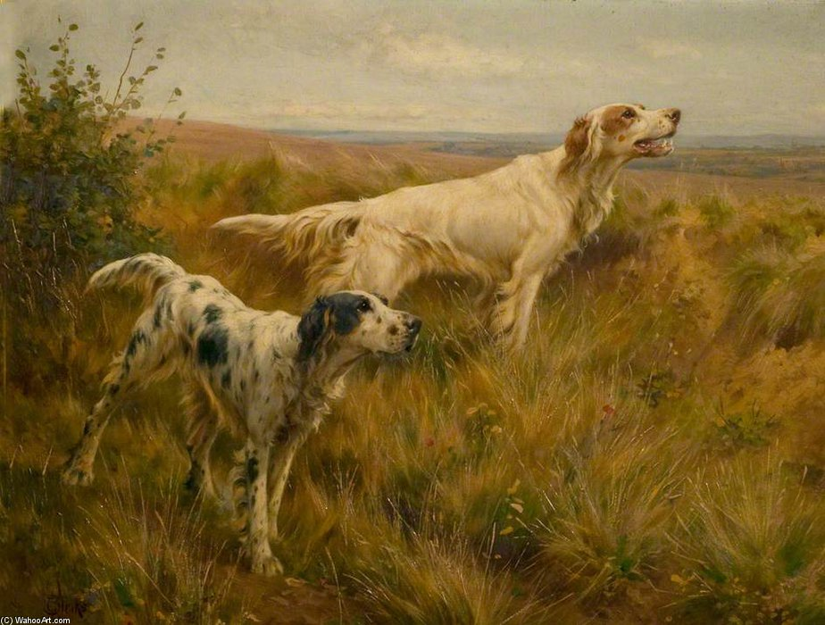 Two Setters In A Landscape by Thomas Blinks (1860-1912, United Kingdom)