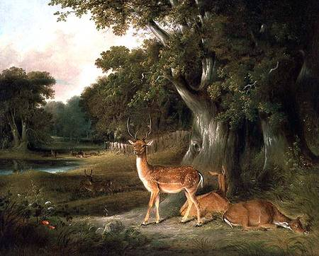 Deer In A Wooded Landscape by Thomas And William Daniell (1769-1837, United Kingdom)