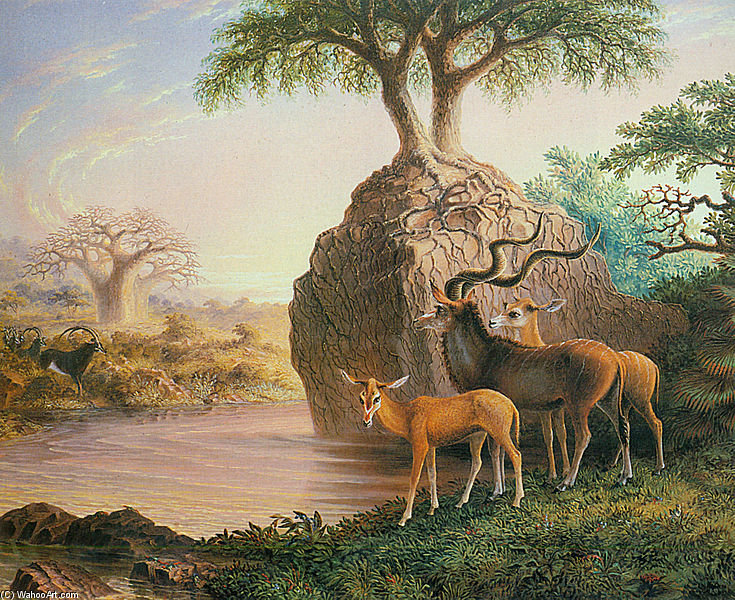 Koodos, Luisi River, Zambesi Valley by Thomas Baines (1820-1875, United Kingdom)