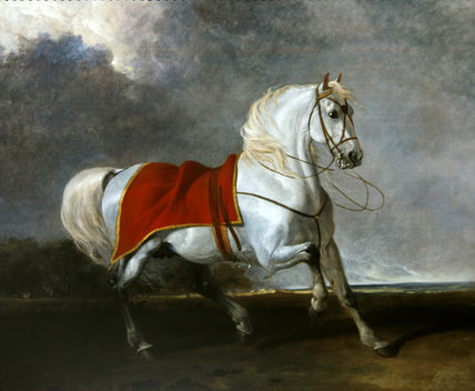 Saddled Grey Charger Frightened by Abraham Cooper (1787-1868, United Kingdom)