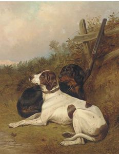 Colin Graeme Roe - English Pointers