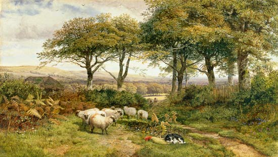A Moment's Rest by George Shalders (1825-1873, United Kingdom)