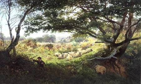 A Shepherd Boy And Flock Of Sheep by George Shalders (1825-1873, United Kingdom) | Museum Art Reproductions | ArtsDot.com