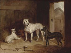 Abraham Cooper - A Bulldog And Bullterriers In An Outhouse