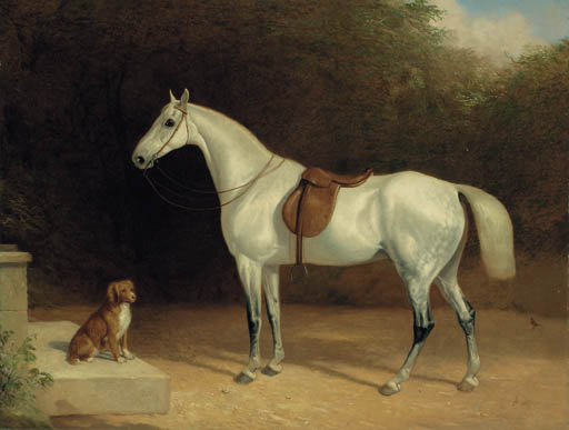 A Saddled Grey Hunter, With A Dog On A Stone Step, And A Robin by Abraham Cooper (1787-1868, United Kingdom)