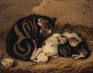 Abraham Cooper - A Tabby With Her Litter