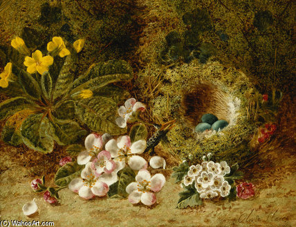 Apple Blossoms, A Primrose And Birds Nest by Oliver Clare (1853-1927, United Kingdom)