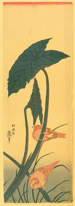 Bird And Plant by Katsushika Hokusai (1760-1849, Japan)