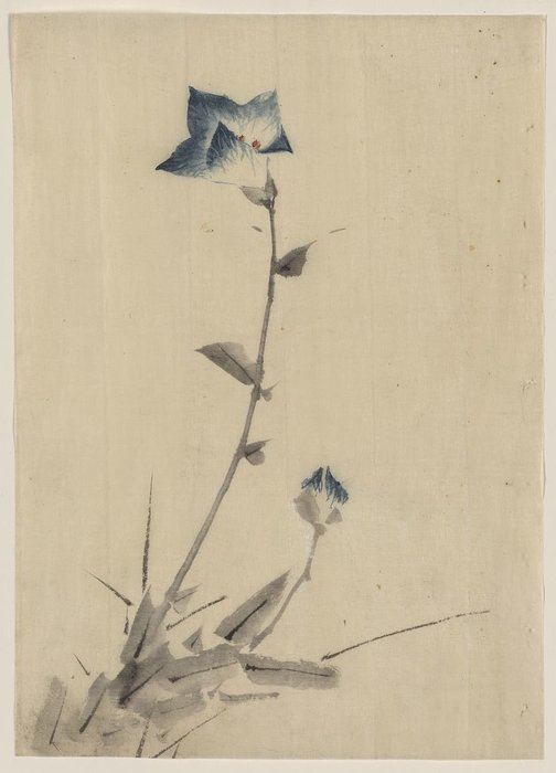 Blue Flower Blossom And Bud At The End Of A Stalk by Katsushika Hokusai (1760-1849, Japan) | Painting Copy | ArtsDot.com