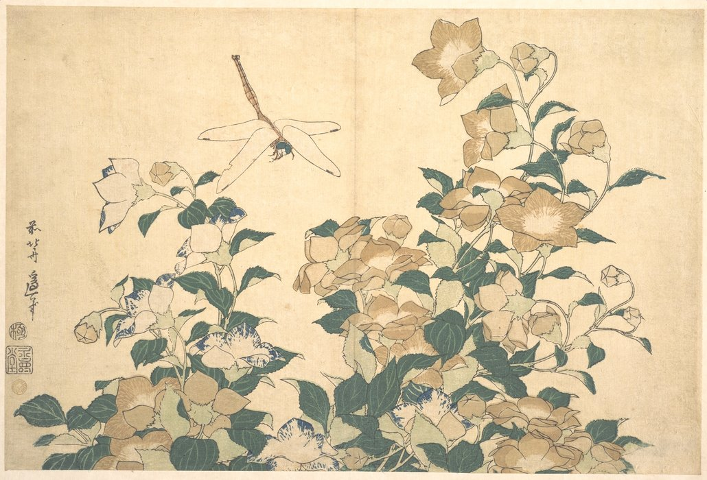 Dragonfly And Bellflower by Katsushika Hokusai (1760-1849, Japan) | Museum Quality Reproductions | ArtsDot.com