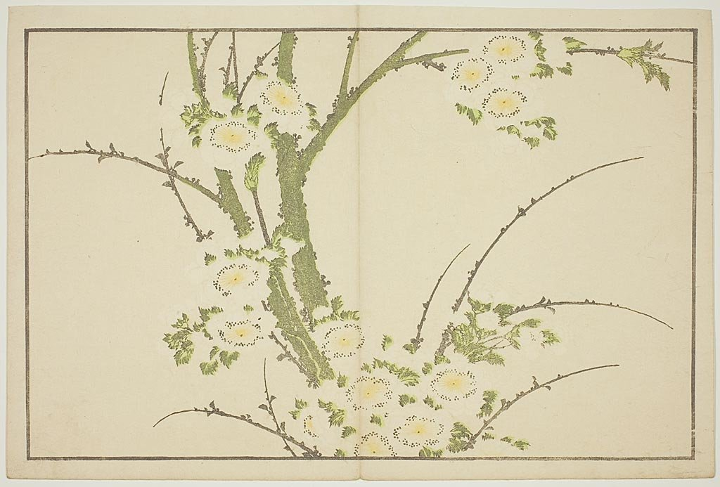 Flowers, From The Picture Book Of Realistic Paintings Of Hokusai by Katsushika Hokusai (1760-1849, Japan) | Museum Art Reproductions | ArtsDot.com