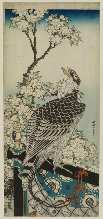 Hawk And Cherry Blossoms by Katsushika Hokusai (1760-1849, Japan)