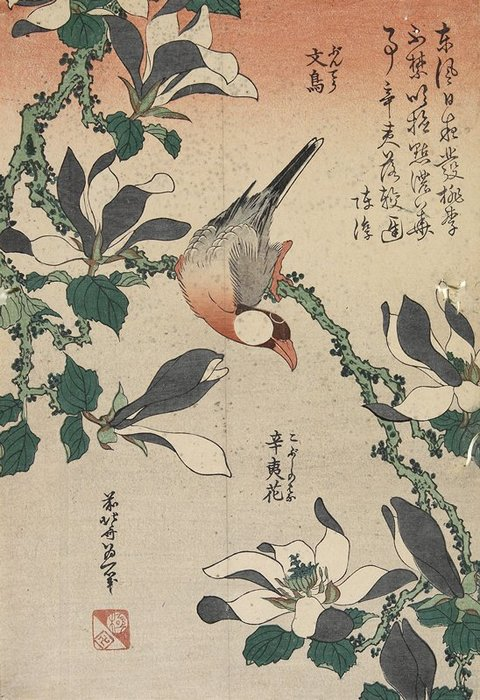 Java Sparrow And Magnolia by Katsushika Hokusai (1760-1849, Japan) | ArtsDot.com