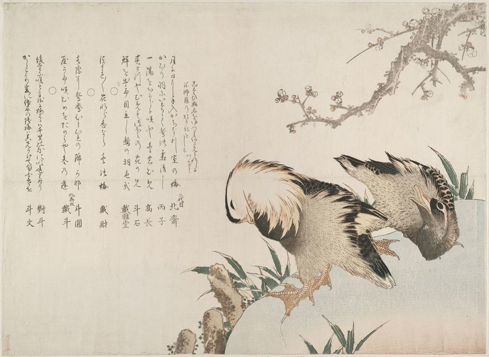 Mandarin Ducks by Katsushika Hokusai (1760-1849, Japan) | Painting Copy | ArtsDot.com