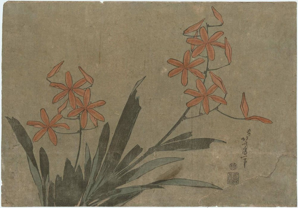 Orange Orchids by Katsushika Hokusai (1760-1849, Japan) | Art Reproduction | ArtsDot.com