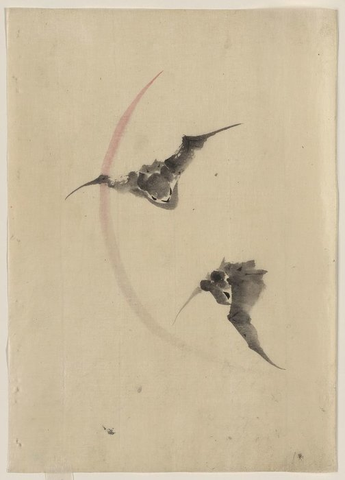 Two Bats Flying by Katsushika Hokusai (1760-1849, Japan) | ArtsDot.com