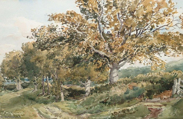 Near Haslemere by Thomas Collier (1620-1691, United Kingdom)