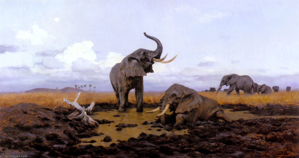 In the twilgiht elephants by Friedrich Wilhelm Kuhnert (1865-1926, Poland) | Museum Quality Reproductions | ArtsDot.com