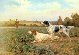 Thomas Blinks - In the field, shooting