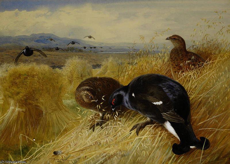 On the stooks - Blackgame by Archibald Thorburn (1860-1935, United Kingdom)