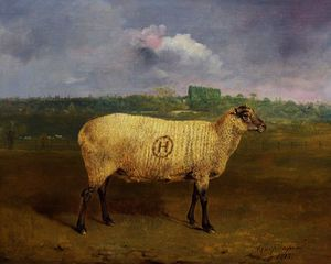 Abraham Cooper - A Prize Ewe with monogram -H-, belonging to Mr J.A