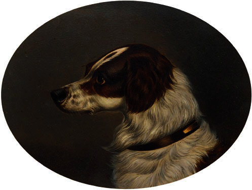 The head of a gundog by Colin Graeme Roe (1858-1910, United Kingdom)