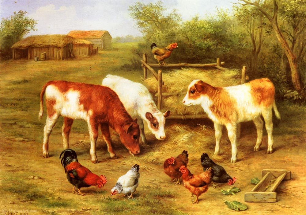 Calves and chickens feeding in a farmyard by Edgar Hunt | ArtsDot.com
