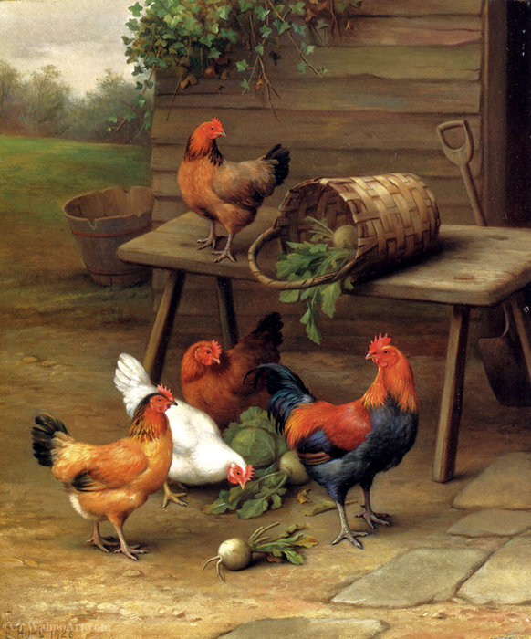 Poultry in a barnyard by Edgar Hunt
