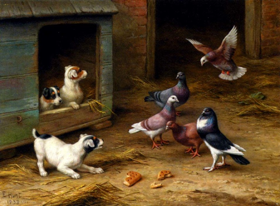 Puppies and pigeons playing by a kennel by Edgar Hunt | ArtsDot.com