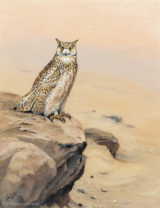 Eagle owl on a rock by George Edward Lodge