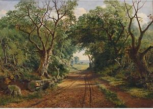 Edward H. Niemann - A wooded country lane