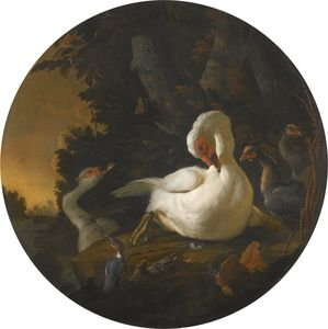 Abraham Bisschop - A mute swan, a goose, and other fowl on a wooded river bank
