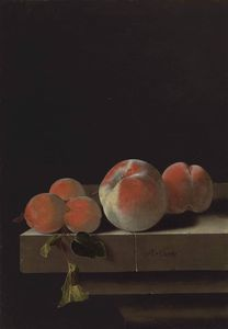 Adriaen Coorte - Peaches and apricots on a..