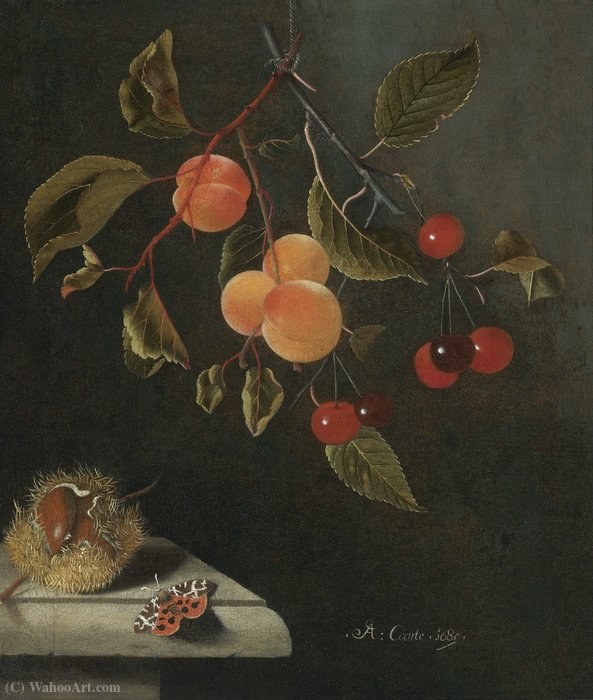 Still life with a butterfly, apricots, cherries and a chestnut by Adriaen Coorte (1665-1707, Netherlands)