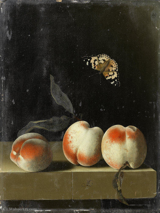 Three peaches on a stone ledge with a Painted Lady butterfly by Adriaen Coorte (1665-1707, Netherlands)