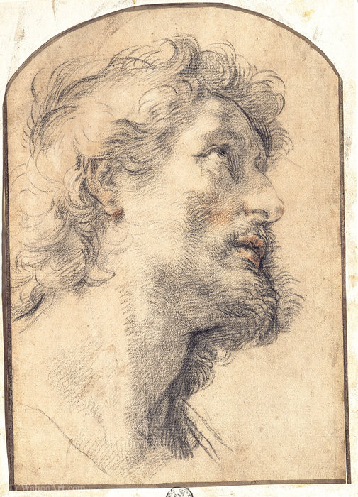 Study of the Head of Saint Crispin by Benedetto Luti (1666-1724, Italy) | Museum Art Reproductions | ArtsDot.com