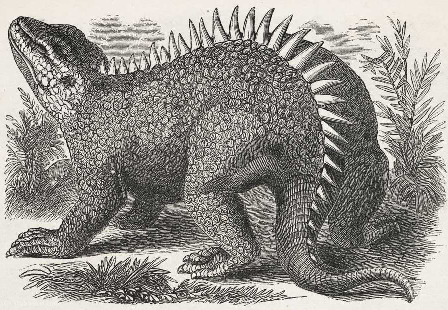 Hylaeosaurus by Benjamin Waterhouse Hawkins (1807-1894, United Kingdom) | Museum Art Reproductions Benjamin Waterhouse Hawkins | ArtsDot.com