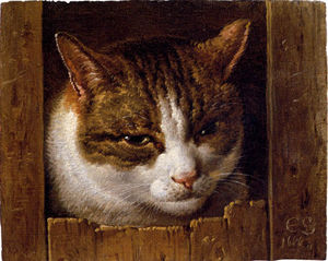 Cornelis Saftleven (Cornelis Z.. - A cat peeping through a fence
