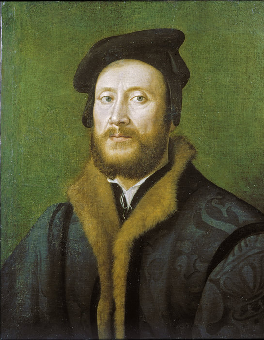 Portrait of a Bolognese Gentleman in a Fur-lined Coat by Giuliano Bugiardini (1475-1555, Italy)