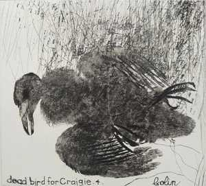 Colin Self - Dead bird for craigie