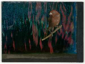 Joseph Cornell - Untitled (red and blue wa..
