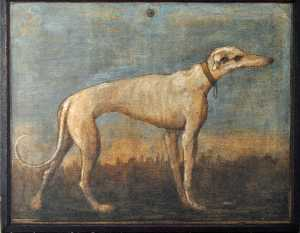 Giandomenico Tiepolo - Greyhound
