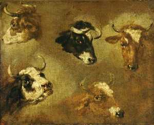 Nicolaes Berchem - Studies of Cows' Heads
