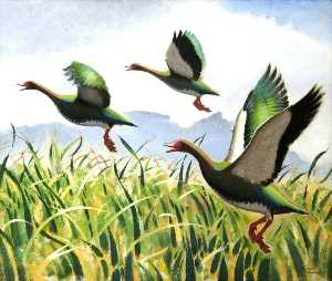 Keith Henderson - Spur Winged Geese