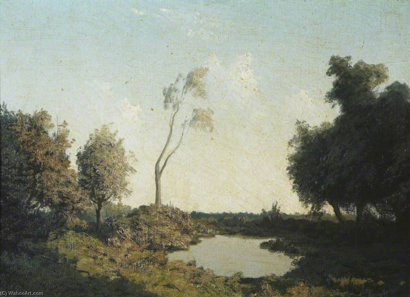A Forest Pool by Algernon Cecil Newton (1880-1968) | Painting Copy | ArtsDot.com
