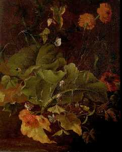 James Sillett - Dock Leaves and Other Flowers
