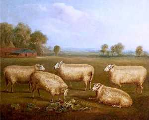 William Henry Davis - Five Leicester Sheep