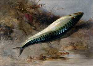 Edward William Cooke - A Mackerel on the Seashore
